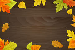 Vector autumn background on wooden board. Vector autumn background with colored leafs on wooden board Royalty Free Stock Photography