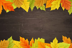 Vector autumn background on wooden board. Vector autumn background with colored leaves on wooden board Stock Image