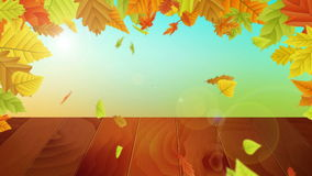 Vector autumn background on wooden board stock footage