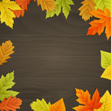Vector autumn background on wooden board. Vector autumn background with colored leaves on wooden board Royalty Free Stock Photo