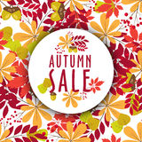 Vector autumn banners with leaves and berries. Round frame text sale Royalty Free Stock Photo