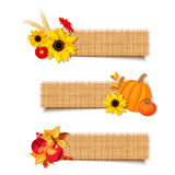 Vector autumn banners with pumpkins, flowers and apples. Royalty Free Stock Image