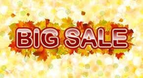 Vector autumn big sale Royalty Free Stock Photos