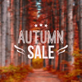 Vector autumn blurred illustration with road, trees and typography text. `Autumn sale Royalty Free Stock Photography