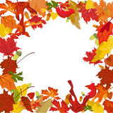 Vector autumn border Stock Photography