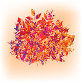 Vector autumn bouquet made of maple and other leaves in grunge style Stock Photo
