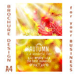 Vector autumn brochure design A4. poster, vector Royalty Free Stock Images