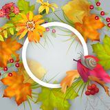 Vector Autumn Card Royalty Free Stock Photo