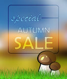 Vector autumn card sale Royalty Free Stock Image