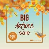 Vector Autumn Card Stock Image