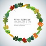 Vector of autumn colorful leaves. Royalty Free Stock Images