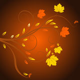 Vector autumn design. Beautiful abstract vector autumn design Stock Images
