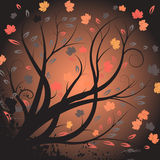 Vector autumn design Royalty Free Stock Photography