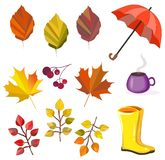 Vector autumn,fall collection,set. Foliage,leaves,umbrella,boots,berries,coffee. Autumn colors. Big collection for your design royalty free illustration