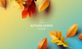 Vector Autumn Falling Leaves Background Vector Illustration