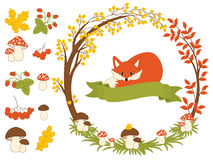 Free Vector Autumn Forest Set With Fox, Mushrooms, Wreath And Leaves. Autumn Clipart. Vector Illustration Royalty Free Stock Photos - 92997608
