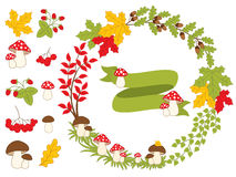 Vector Autumn Forest Set with Wreath, Mushrooms, Leaves and Berries. Vector autumn forest set with wreath, mushrooms, amanita, leaves, berries and ribbon. Autumn Royalty Free Stock Images