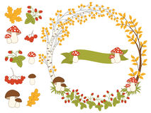 Vector Autumn Forest Set with Wreath, Mushrooms, Leaves and Berries. Vector autumn forest set with wreath, mushrooms, amanita, leaves, berries and ribbon. Autumn Royalty Free Stock Photography