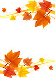 Vector autumn frame Royalty Free Stock Image
