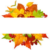 Vector autumn frame with fall leaf 2 Royalty Free Stock Image