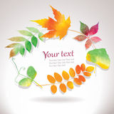 Vector autumn frame. From water color leaves, editable eps 10 Royalty Free Stock Photography