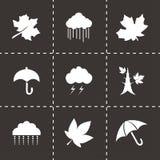 Vector autumn icon set Stock Photography