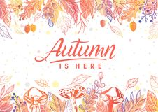 Vector autumn illustration. Autumn is here.Hand drawn lettering with mushroomss and leaves in autumn colors.Seasons greetings card perfect for prints, flyers Stock Photos