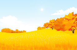 Vector of autumn landscape Stock Photography