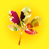 Vector autumn leaves background Stock Photography