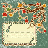 Vector autumn leaves background Stock Photos