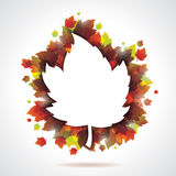 Vector autumn leaves background with copy space. Stock Image