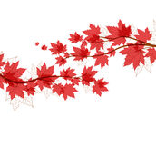Vector autumn leaves. Vector flying autumn leaves background with space for text Royalty Free Stock Photography