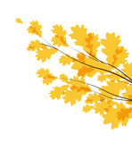 Vector autumn leaves. Vector flying autumn leaves background with space for text royalty free illustration