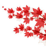 Vector autumn leaves. Vector flying autumn leaves background with space for text Royalty Free Stock Photo