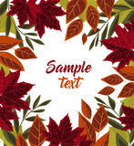 Vector autumn leaves Stock Images