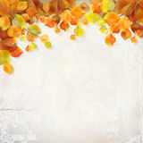 Vector autumn leaves plaster wall background Stock Photography