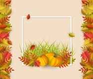 Free Vector Autumn Leaves, Pumpkin Square Frame Stock Image - 122201221