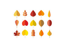Vector autumn leaves red, orange yellow colors Royalty Free Stock Photography