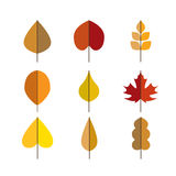 Vector autumn leaves red, orange yellow colors Stock Photography
