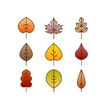 Vector autumn leaves red, orange yellow colors line art. Seasonal illustration Royalty Free Stock Image