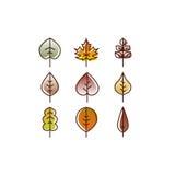 Vector autumn leaves red, orange yellow colors line art. Seasonal illustration Stock Images