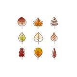 Vector autumn leaves red, orange yellow colors line art. Seasonal illustration Stock Photo