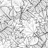 Vector autumn leaves seamless pattern. Black and white background. Royalty Free Stock Photo
