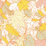 Vector autumn leaves seamless pattern. Yellow fall background with outline hand drawn leaves. Royalty Free Stock Image