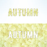 Vector autumn lettering background with light Stock Photo