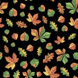 Vector autumn pattern. Vector pattern with the image of autumn leaves on a black Royalty Free Stock Photo