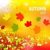 Vector autumn sale background with red, orange, green and yellow falling autumn leaves and circles on a orange. Background. Autumn sale background with colorful Royalty Free Stock Images