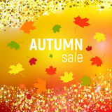 Vector autumn sale background with red, orange, green and yellow falling autumn leaves. And circles on a orange background. Autumn sale background with colorful Stock Images