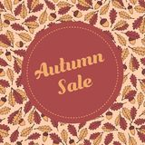 Vector autumn sale banner template with pattern containing oak leaves and acorns. Usable for cards, flyers, posters and labels Stock Photography