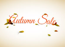 Vector autumn sale poster / illustration Royalty Free Stock Images